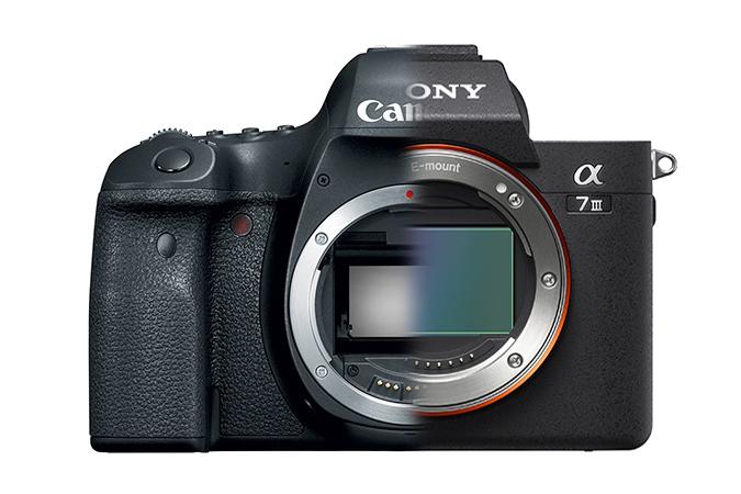 Trecerea de la Canon la Sony si avantajele mirrorless